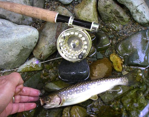 岩魚と釣り竿