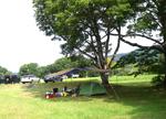 広々したキャンプサイト